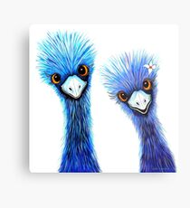 Quirky Emus Metal Print