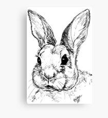 Rupert Rabbit Canvas Print