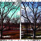 Pop Art Trees by chels19noel
