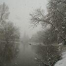 Snowing by Jan Szymczuk