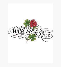 Wild Irish Rose Photographic Print