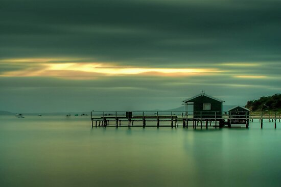 The Dream by Ian Stevenson