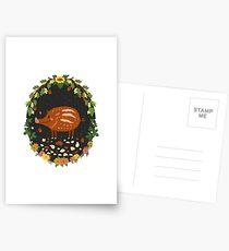 Teddy boar Postcards