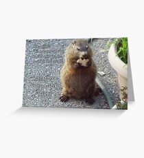 Groundhog Day - Feast Greeting Card