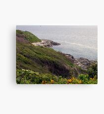Down To The Sea Canvas Print