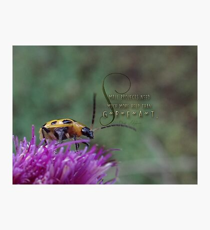 small projects-inspirational Photographic Print