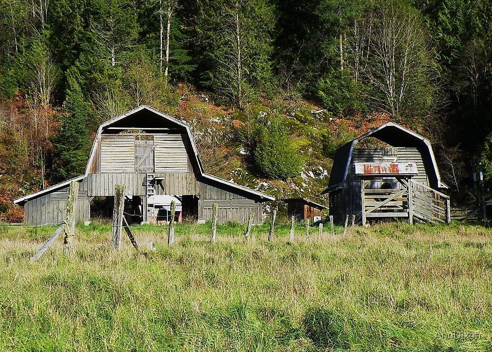 Old Barns by AnnDixon