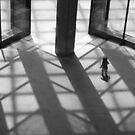 Shadowland by John Violet