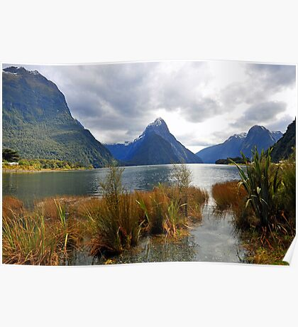 Milford Sound. South Island. New Zealand Poster