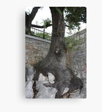 strong will Canvas Print