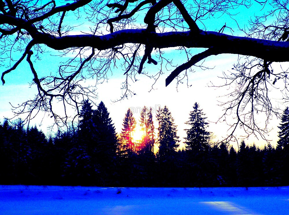 "Winter Twilight featured in ""Too Bright"" by ©The Creative  Minds"