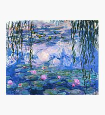 Monet Lilies Photographic Print