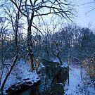 Winter Twilight at the Creek--Westward by MarjorieB