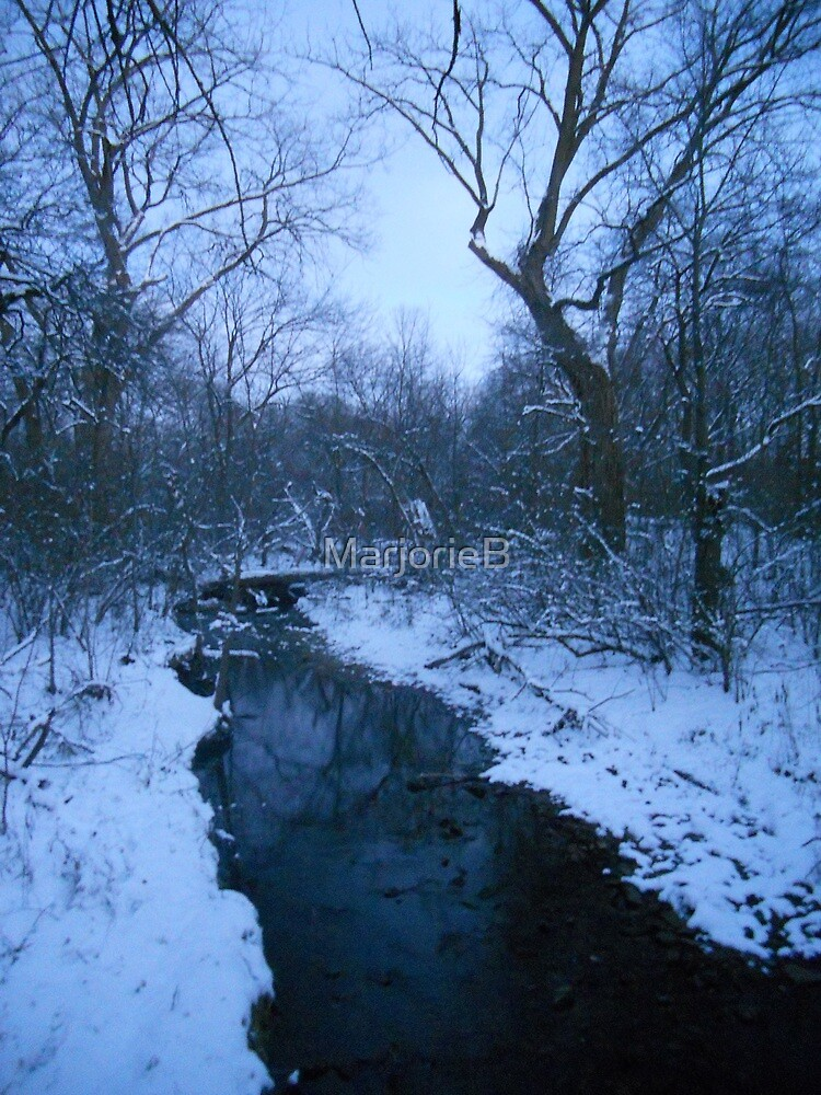 Winter Twilight at the Creek--Eastward  by MarjorieB