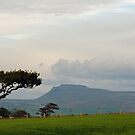 A Yorkshire Fell by mikebov
