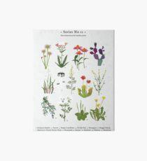 Canadian Prairie Botanicals Art Board Print
