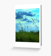 Prairie Greeting Card