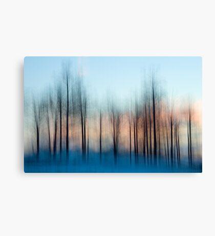 Winter Trees at Dawn Canvas Print