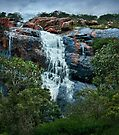 """""""60 Foot Falls"""" by Heather Thorning"""