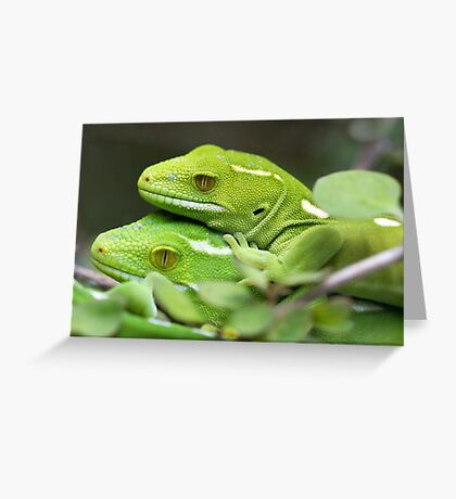 Wellington Green Gecko Greeting Card