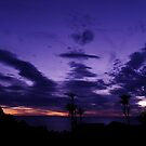 Setting Sun At Palliser Bay by howieb101