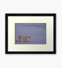 Bound for ice Framed Print