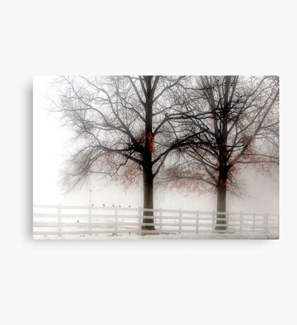 The Way a Bird Rests on Its Perch Canvas Print