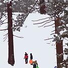 Winter Fun by Justin Baer