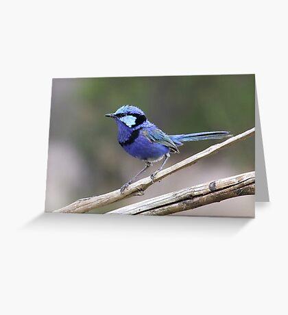 Little Blue Dreamer Greeting Card