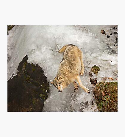 Slip, Sliding Away.. Photographic Print