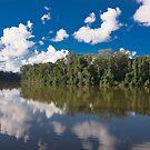 Cocha Salvador, Parque Nacional del Manu, Peru by Erik Schlogl