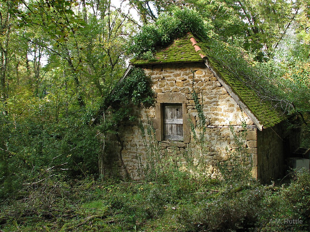 Stone Cottage Overgrown By AM Ruttle