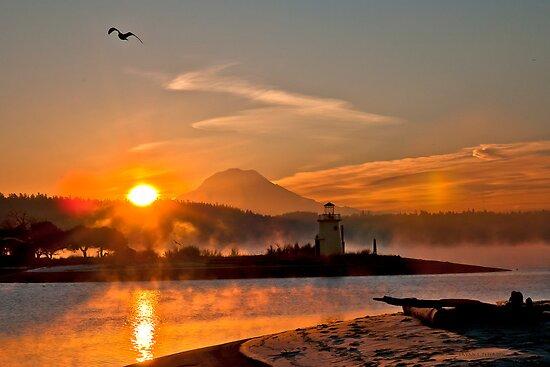 Sun Glow by Bryan Peterson
