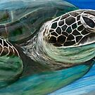 Honu Cruizin by DakineFineart