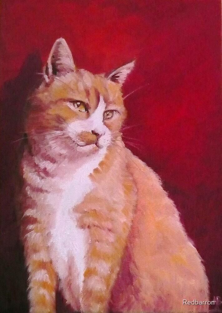 Red cat by Redbarron