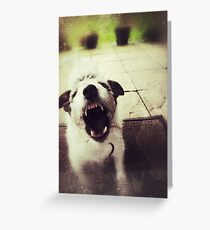 Angry Jack Russell Greeting Card