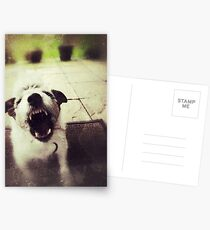 Angry Jack Russell Postcards