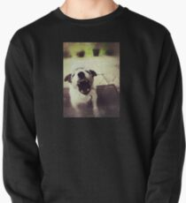 Angry Jack Russell Pullover Sweatshirt