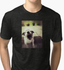 Angry Jack Russell Tri-blend T-Shirt