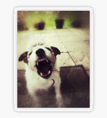 Angry Jack Russell Transparent Sticker