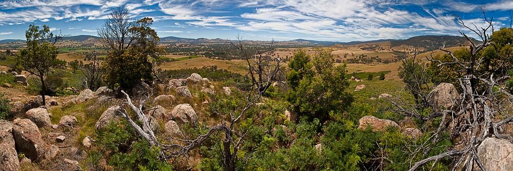 Rocky, Elmhurst, Victoria, Australia by Samuel Gundry