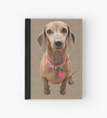Team Coco 2 Hardcover Journal