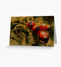RoseHip Greeting Card