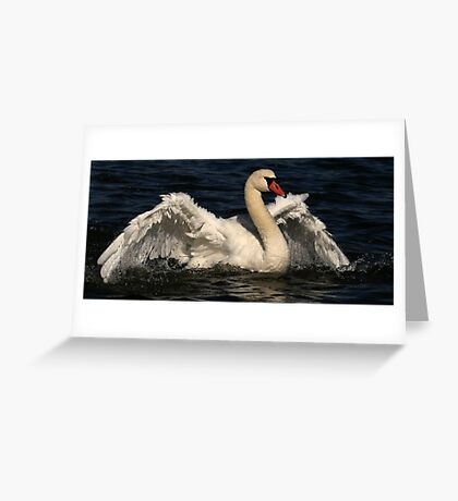 Caught In A Flap Greeting Card