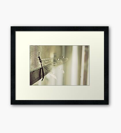 and through the looking glass we glimpsed a realm we only met in our dreams Framed Print