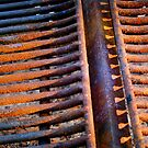 They Call Me Rusty by Michael  Herrfurth