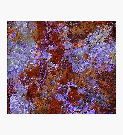 """Autumn""  Photographic Print"