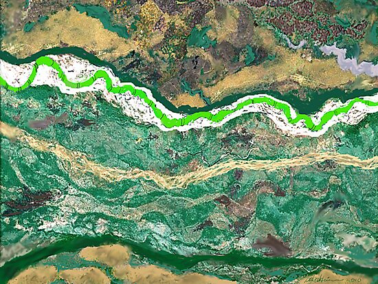 """Snake River"" by Patrice Baldwin"