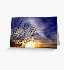 Evening Blades Greeting Card