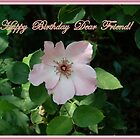 Happy Birthday Card by rasnidreamer